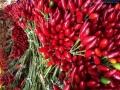 Peperoncino-piccante-fresco-calabrese